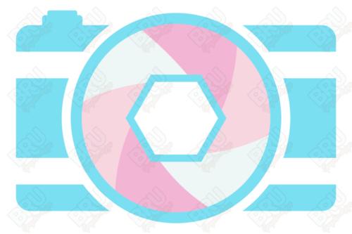 Premade Photography 02 2 500x333 - Photography Logo – 02